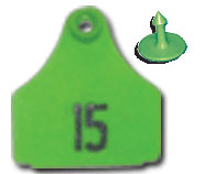 Ear Tag  Flexible Plastic  Small