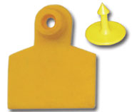Ear Tag  Flexible Plastic  Large